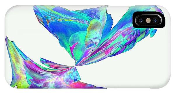 Mexico Hibiscus Series 11 IPhone Case