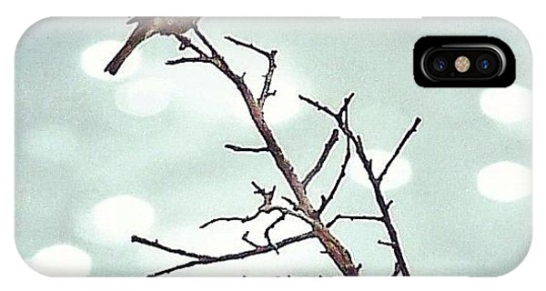 Sky iPhone Case - #mgmarts #bird #nature #life #bestpic by Marianna Mills