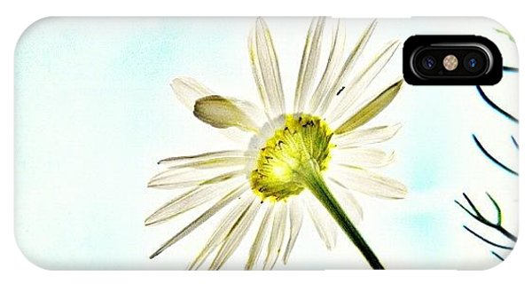 Iphonesia iPhone Case - #mgmarts #daisy #flower #morning by Marianna Mills
