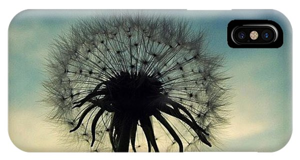 Instagram iPhone Case - #mgmarts #dandelion #weed #sunset #sun by Marianna Mills