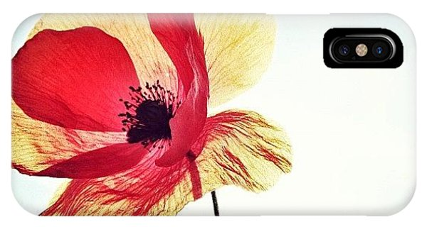 Picoftheday iPhone Case - #mgmarts #poppy #nature #red #hungary by Marianna Mills