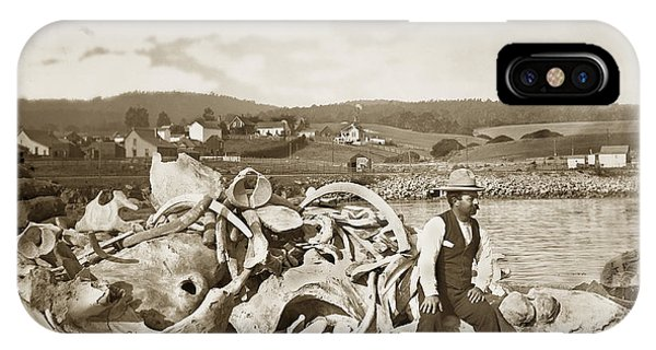 Michael Noon Sitting On A  Pile Of Whale Bones Monterey Wharf  Circa 1896 IPhone Case