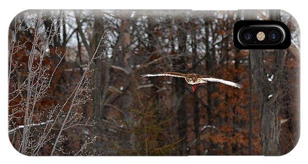 Michigan Redtail Hawk IPhone Case