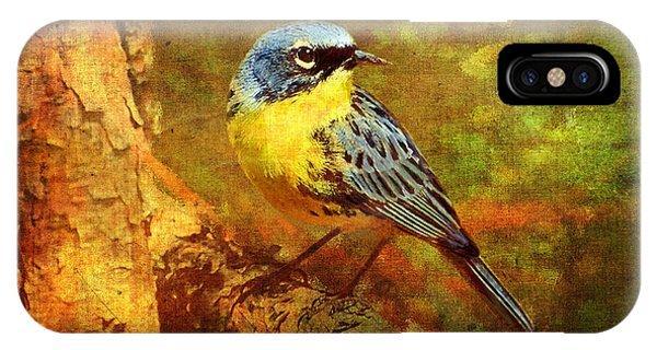 Warbler iPhone Case - Michigans Rare Kirtlands Warbler by Lianne Schneider