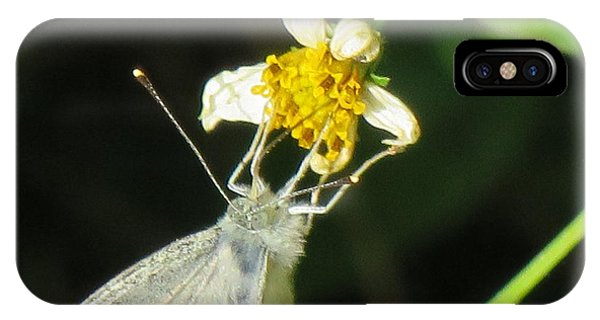 Micro Photography IPhone Case