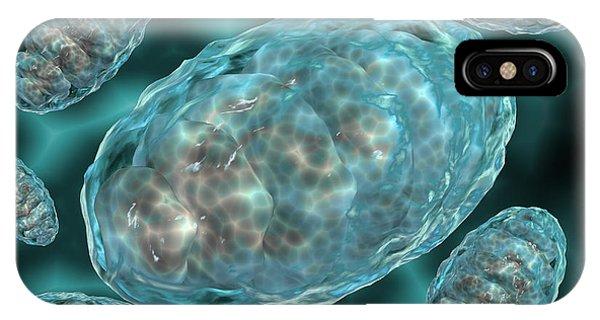 Microscopic View Of Mitochondria IPhone Case