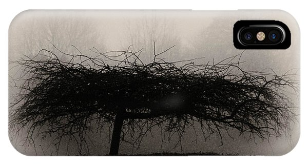 Middlethorpe Tree In Fog Sepia - Award Winning Photograph IPhone Case