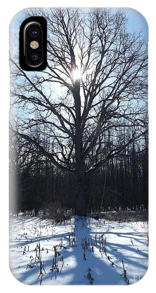 Mighty Winter Oak Tree IPhone Case