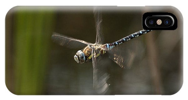 Migrant Hawker Dragonfly In Flight IPhone Case