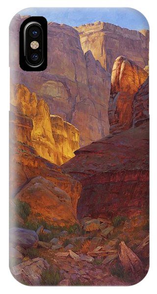 Grand Canyon iPhone Case - Mile 202 Canyon by Cody DeLong