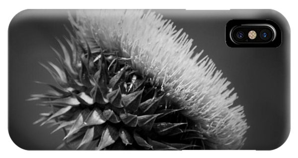 Milk Thistle Bw IPhone Case