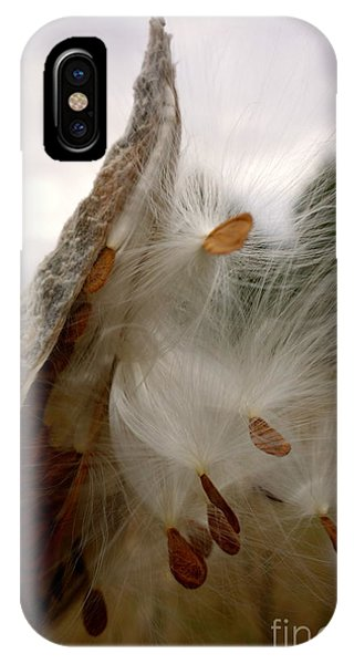 IPhone Case featuring the photograph Milkweed by Jacqueline Athmann