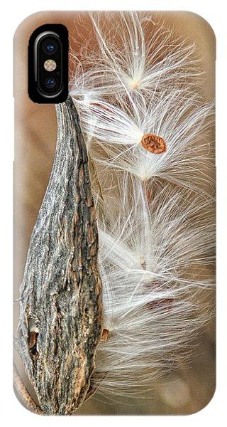 Milkweed Pod And Seeds IPhone Case
