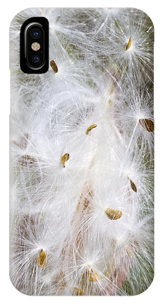 Milkweed Seeds And Fluff IPhone Case