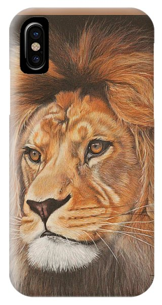 iPhone Case - Milo - The Barbary Lion by Jill Parry