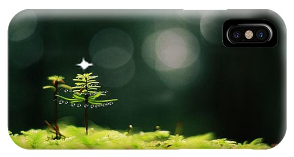 Miniature Christmas Tree IPhone Case