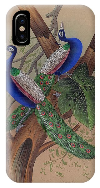 Miniature  Painting - Mughal IPhone Case