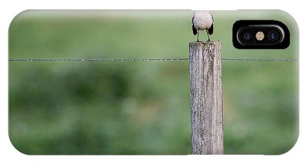 Minimalism Mockingbird IPhone Case