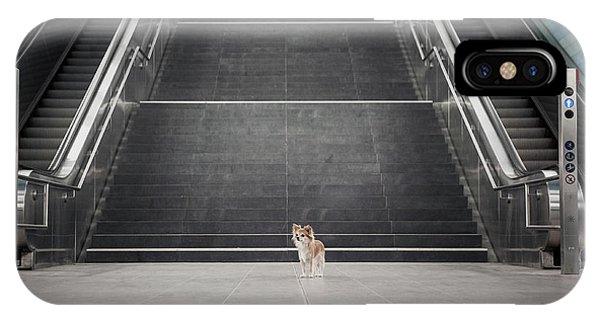 Prairie Dog iPhone Case - Minimalismus II. by Heike Willers