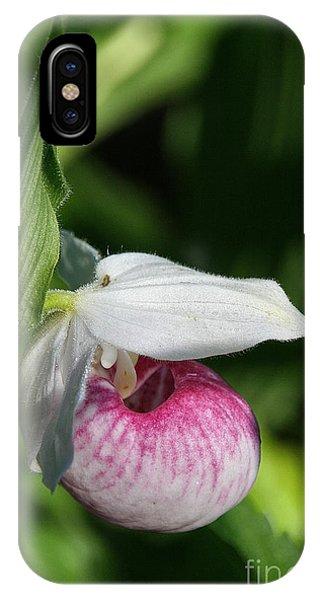 Minnesota's Wild Flower IPhone Case