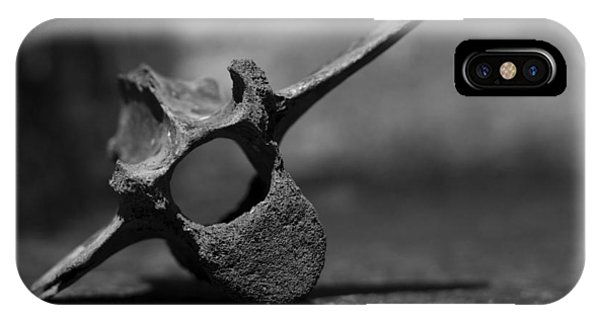 Miocene Fossil Whale Vertebra IPhone Case
