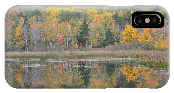 Mirrored Fall Splendor IPhone Case