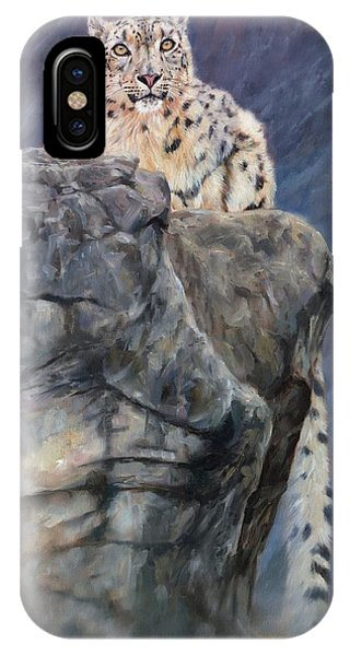 Snow Leopard iPhone Case - Miruchas's Realm by David Stribbling