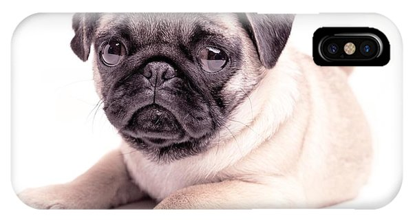 Pug iPhone X Case - Miss You by Edward Fielding