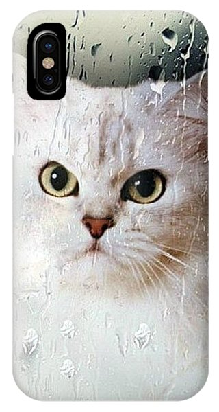 Mistletoe In The Window IPhone Case