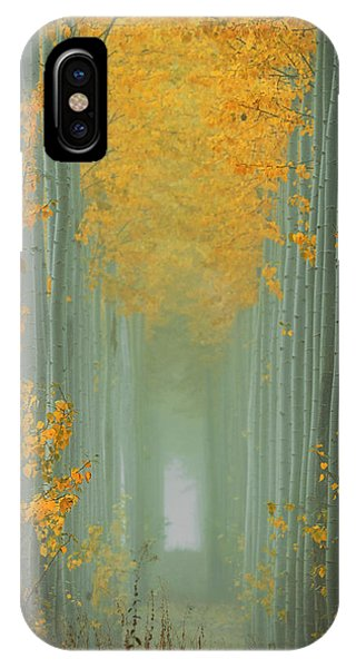 Morning Mist iPhone Case - Misty Autumn Path by Lydia Jacobs