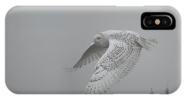Misty Day Snowy IPhone Case