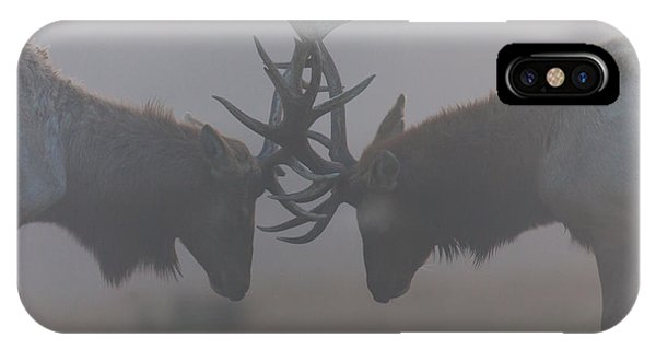 Misty Encounter IPhone Case