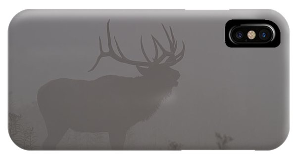 Misty Morning Bull Elk IPhone Case