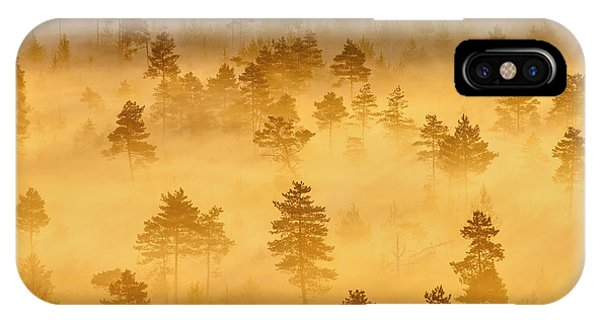 Misty Trees In The Morning IPhone Case