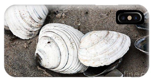 Mixed Shells Phone Case by John Rizzuto