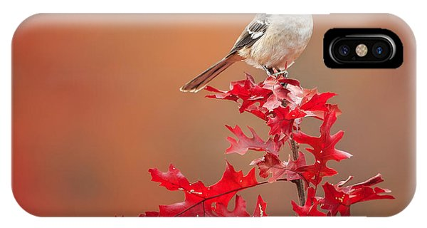 Mockingbird Autumn Square IPhone Case