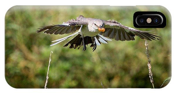Mockingbird In Flight IPhone Case