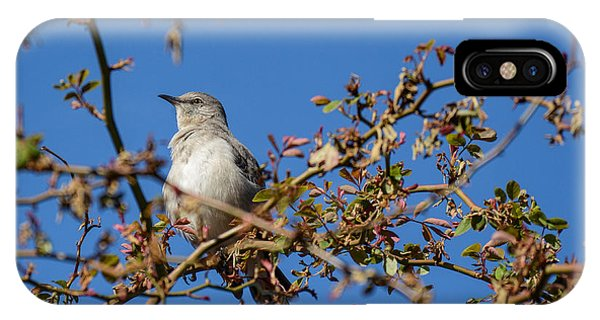 Mockingbird  IPhone Case