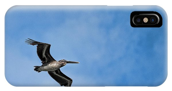 Modern Day Pterodactyl  Phone Case by Frank Feliciano