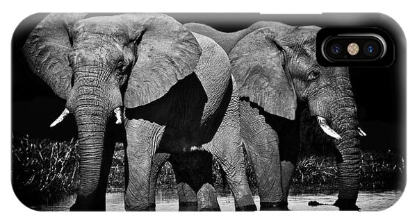 Mom And Baby Elephant IPhone Case