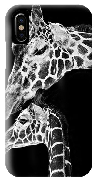 Giraffe iPhone Case - Mom And Baby Giraffe  by Adam Romanowicz