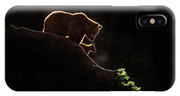 Brown Bear iPhone Case - Mom Bear With Cub by Xavier Ortega