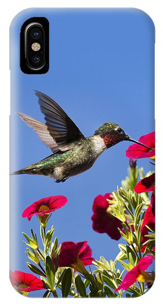 Moments Of Joy IPhone Case