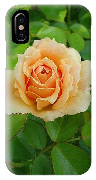 Mom's Rose IPhone Case