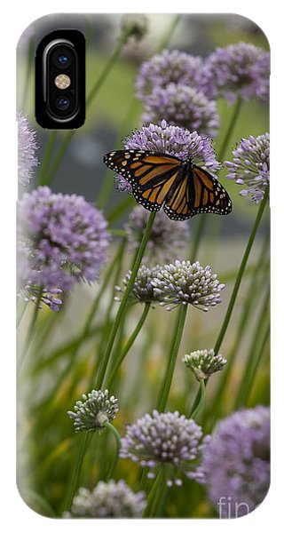 Monarch And Chives IPhone Case