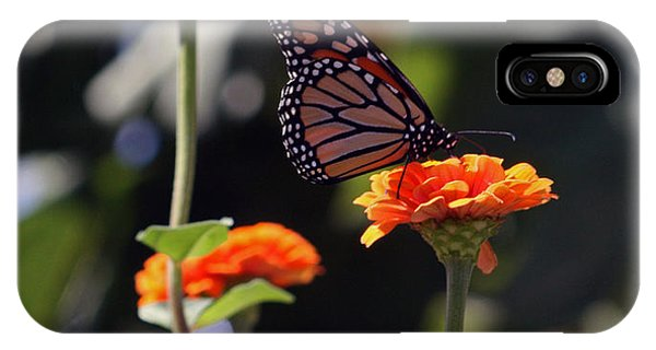 Monarch Butterfly And Orange Zinnias IPhone Case