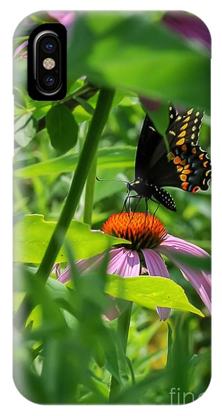 Monarch Butterfly Deep In The Jungle IPhone Case