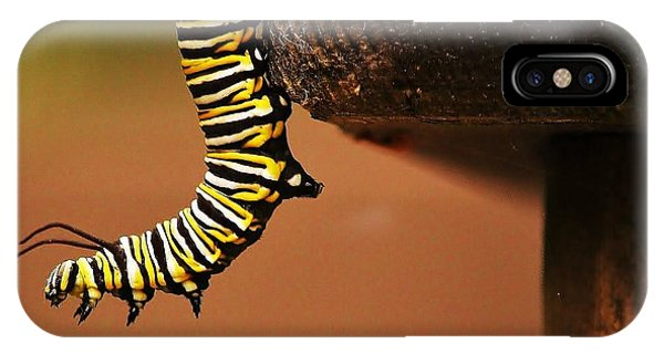 Monarch Caterpiller IPhone Case