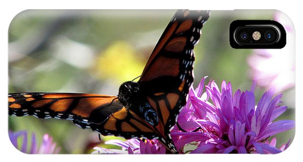 Monarch Meditation IPhone Case