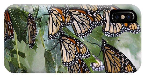 Monarch Migration IPhone Case